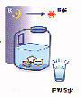翌日にはたっぷりのPWS水ができています