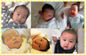 FB2016.6.29赤ちゃんたち