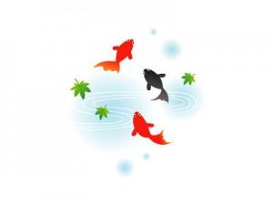 free-illustration-summer-kingyo